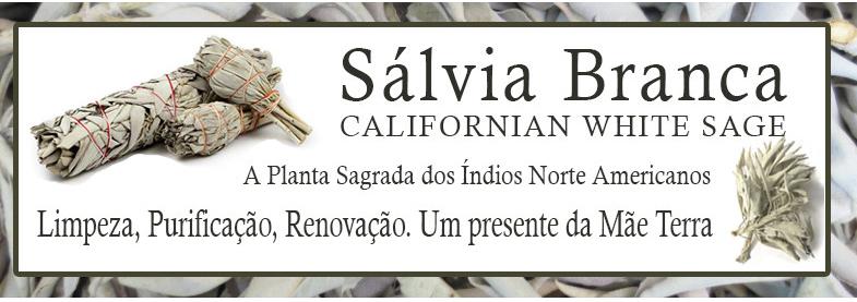 White_Sage_Salvia_Branca
