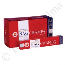 Golden_Nag_Champa_CX.jpg